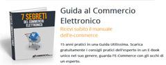 Guida Al Commercio Elettronico