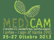 logo-medcam2013