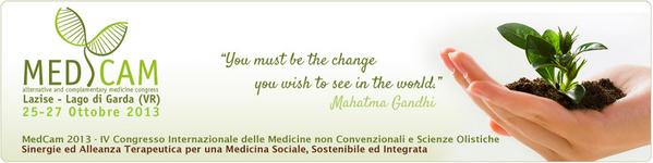 MedCam2013_Banner600