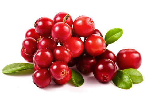 Estratto Innovativo del Frutto Intero di Cranberry